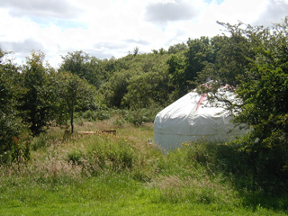 One of our yurts.